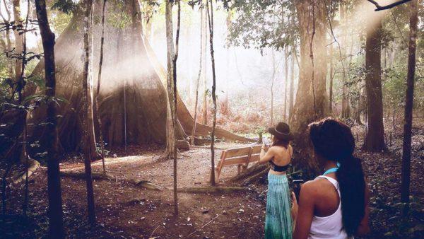 Ayahuasca Retreats in Peru